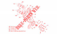 Front cylinder timing system for Aprilia SL Falco 2001